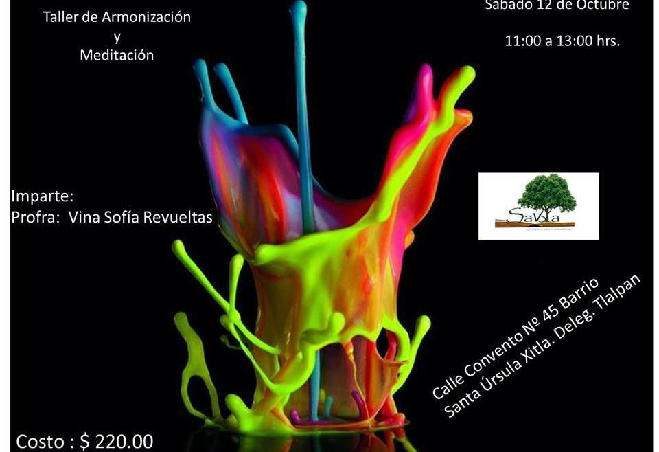 2013-10-12_TallerDeArmoinizacion_Savbia