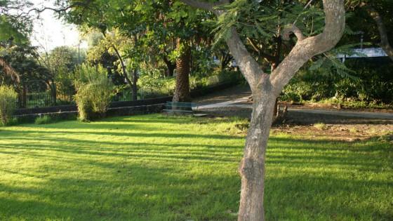 instalaciones_jardin_04