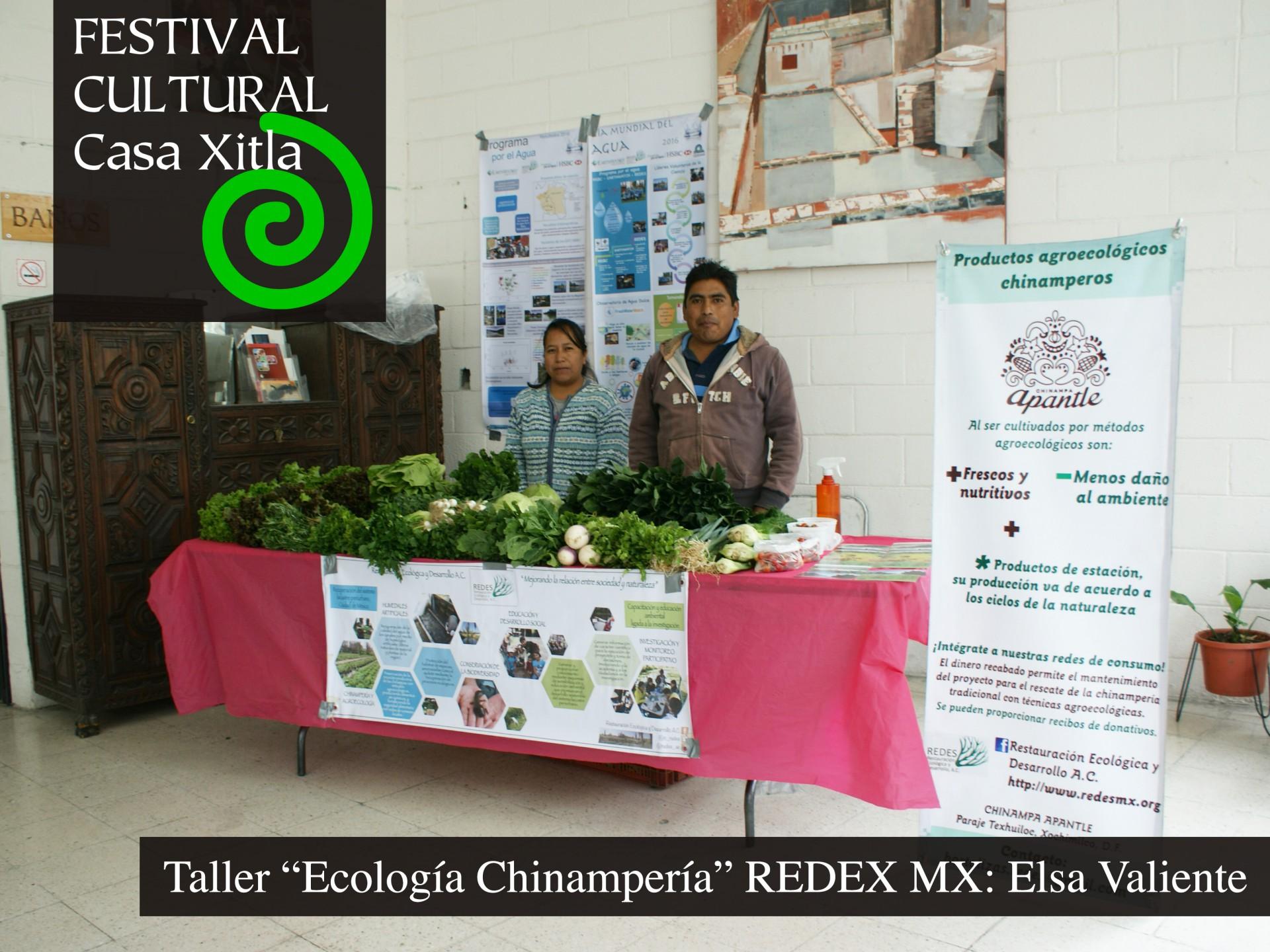 Taller ecología
